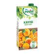 Pınar Meyve Suyu Kayısılı 1 L